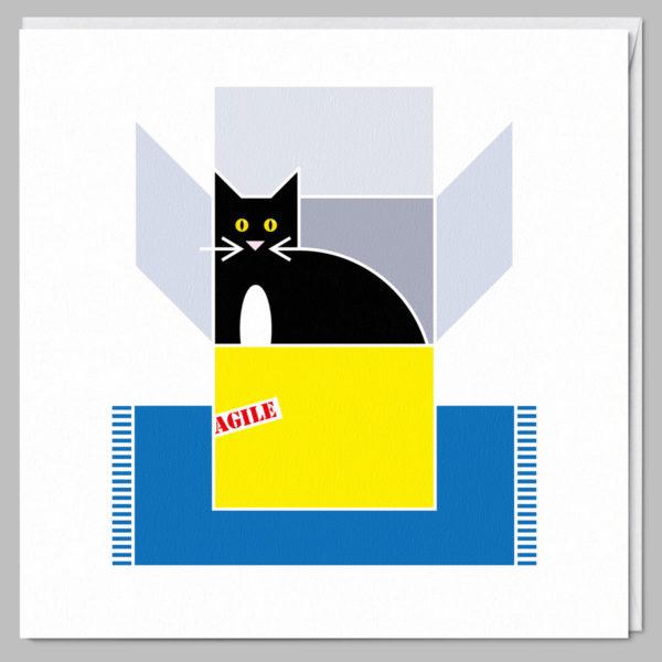 product square card agile cat a